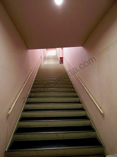 レイビス 仙台店の店舗が入っているウェルビルの階段