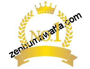 ナンバーワンマーク